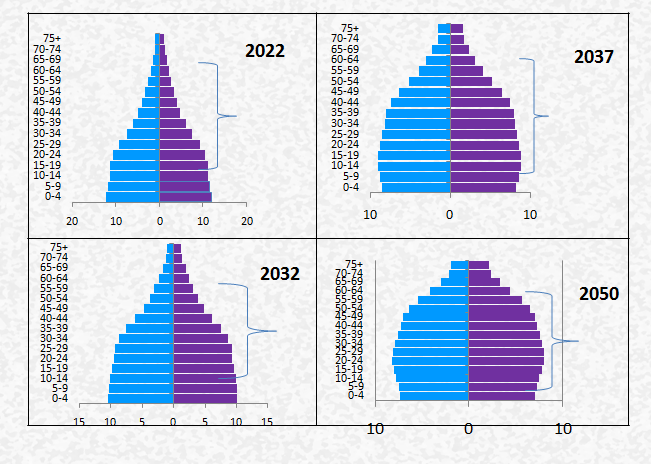 Population structure 2022 - 2050
